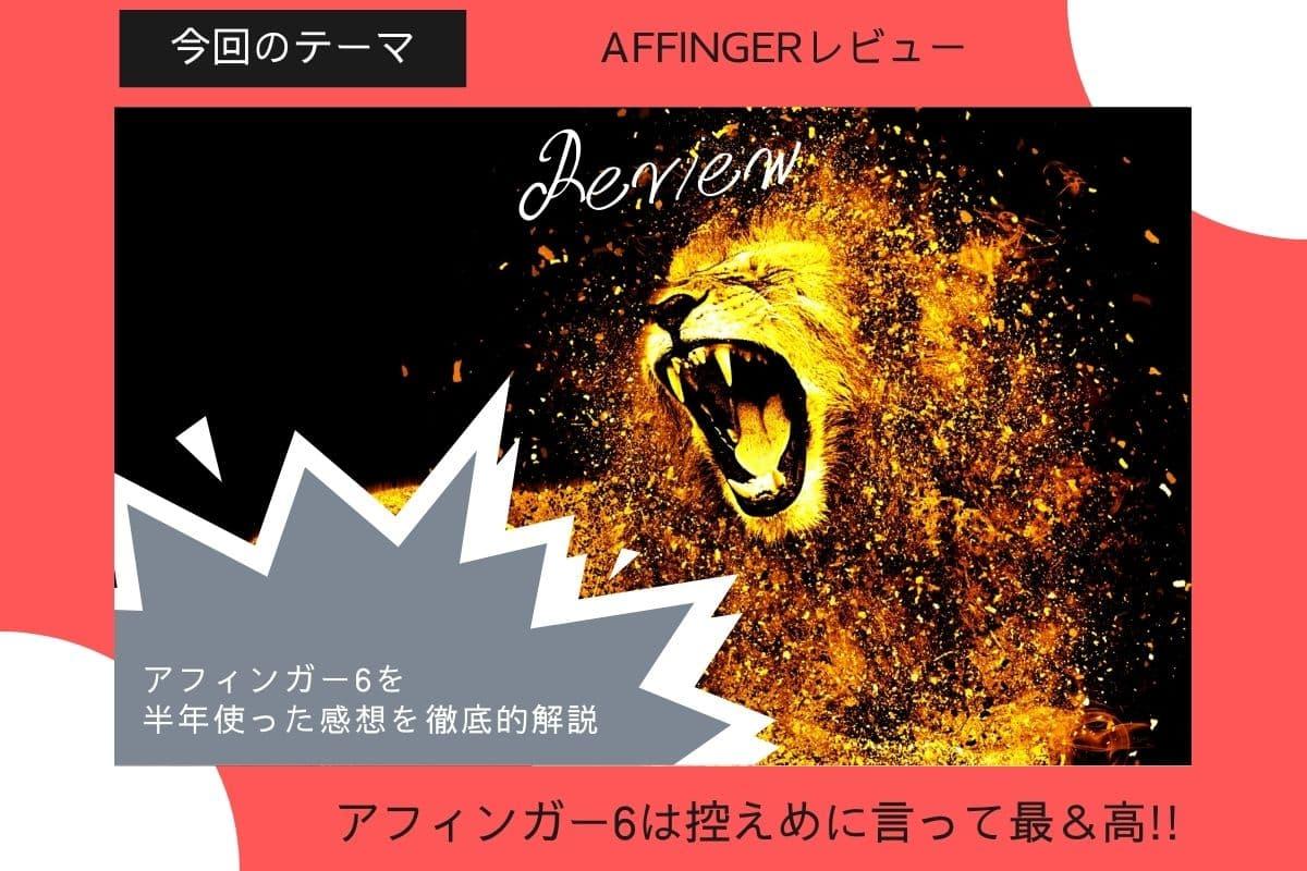 AFFINGER6(ACTION)6ヶ月使った感想&レビュー【豪華8特典付きお得入手方法】