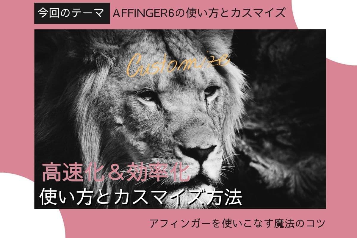 【図解】AFFINGER5&6の使い方と初期設定カスタマイズ方法【初心者マニュアル】